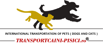 International transportation of pets ( dogs and cats )