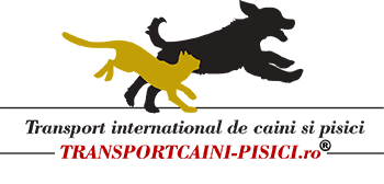 Transport de animale caini și pisici international in europa